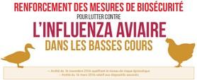 lutte contre la grippe aviaire
